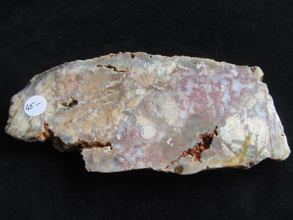 Polished Dendritic Opal DO120