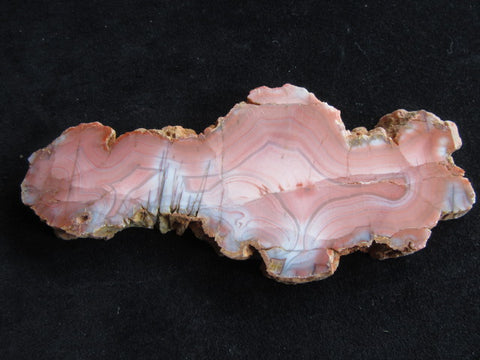 Polished Pilbara Agate PA233