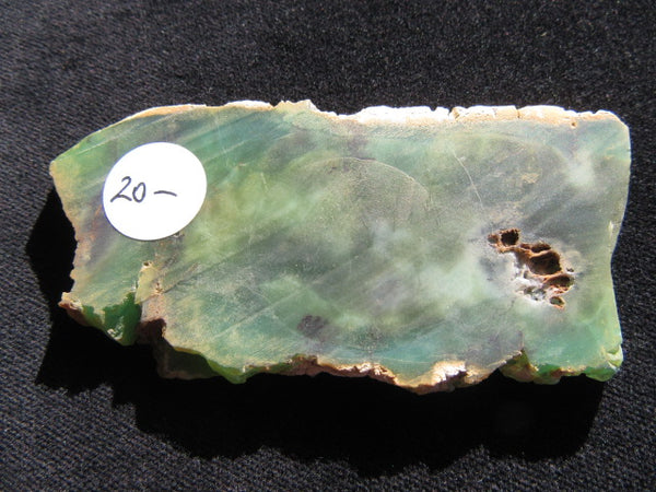 Polished Chrysoprase CH329