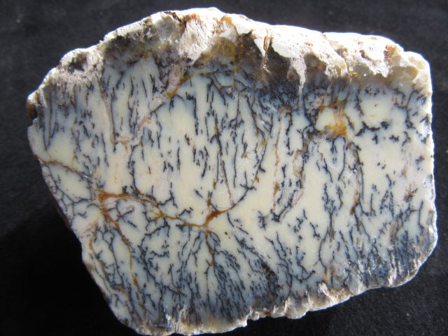 Polished Dendritic Opal DO130