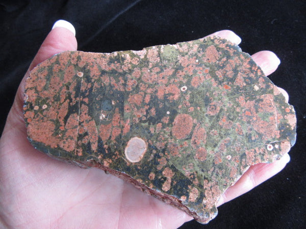 Polished Spherulitic Rhyolite SR117