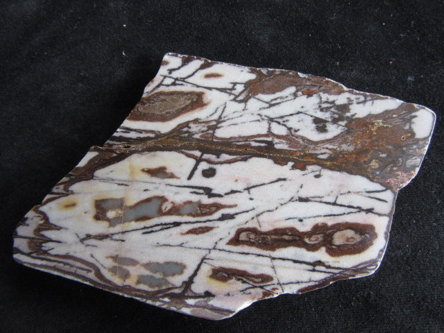 Polished Outback Jasper slab OJ126