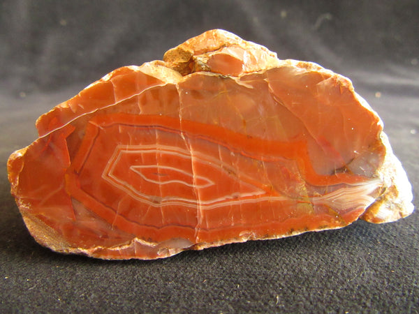 Polished Pilbara Agate PA249