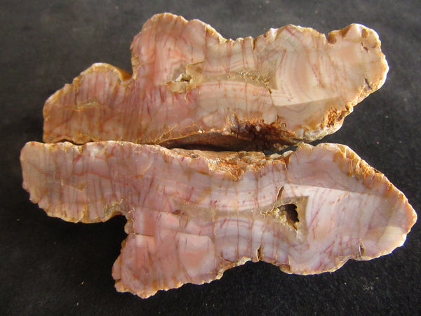 Polished Pilbara Agate PA240