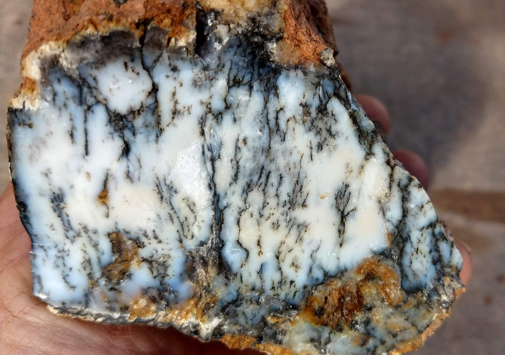 Dendritic Opal  rough.  DOR 145