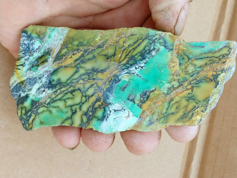 Variscite Polished Slab.  VP 214