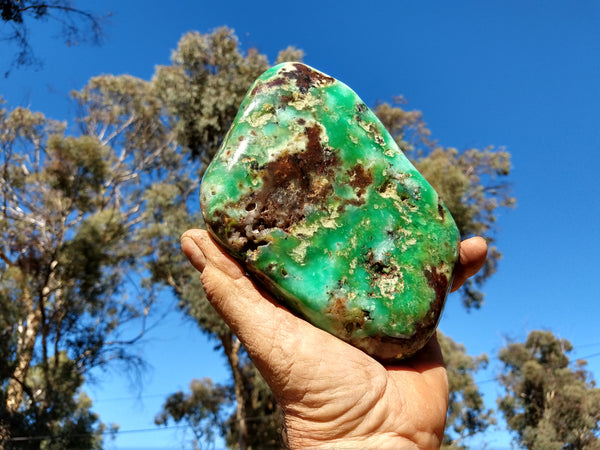 Contour Polished Chrysoprase CHC101