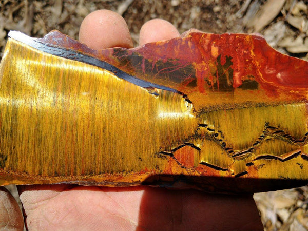 Polished Tiger Eye TE245