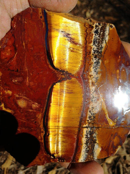 Polished Tiger Eye TE246