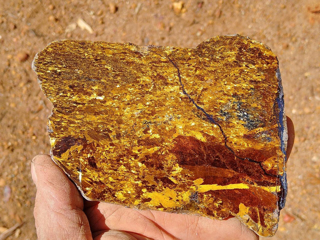 Polished Golden Amphibolite GA104