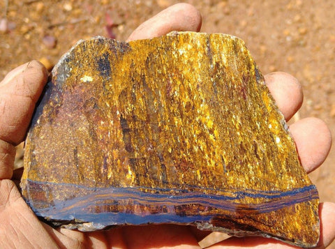 Polished Golden Amphibolite GA105