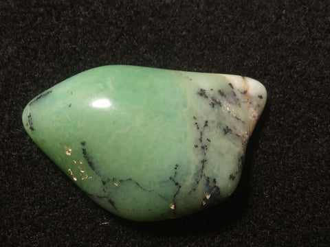 Tumble Polished Chrysoprase CHT118