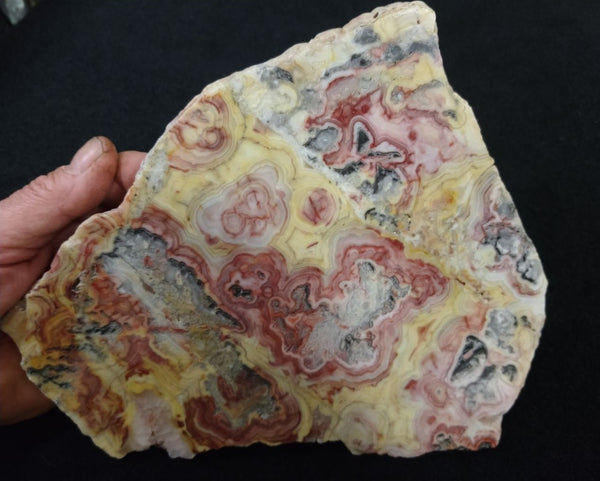 Polished Crazy Lace Agate CLA235