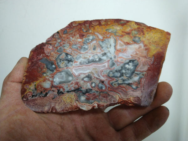 Polished Crazy Lace Agate CLA236