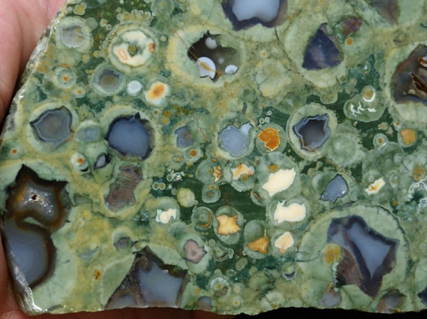 Polished Rainforest Jasper RFJ114