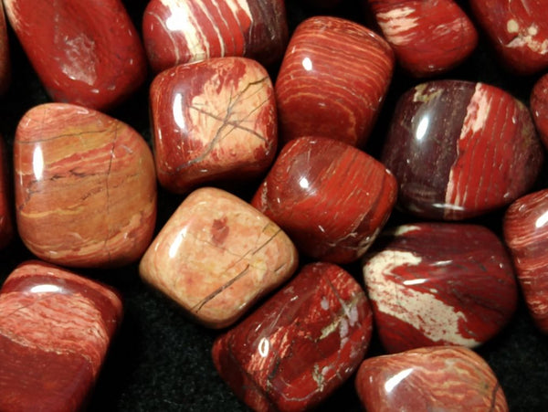 500 grams Tumble Polished Snakeskin Jasper SST108