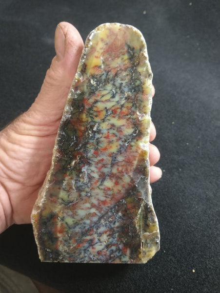 Polished Dendritic Opal DO160