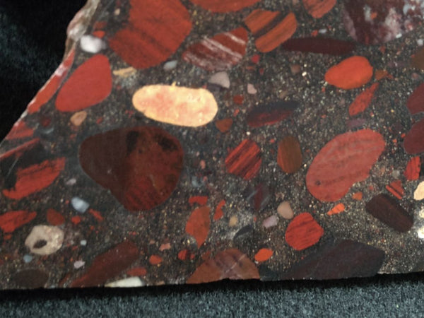 Jelly Bean Jasper JBJ325