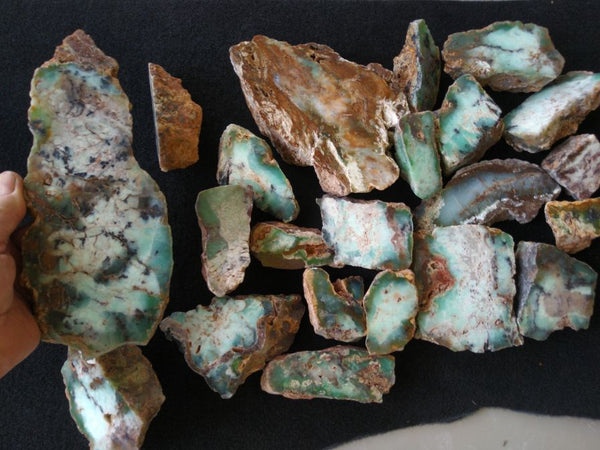 Bulk lot of Polished Chrysoprase CH369    Bargain clearance !