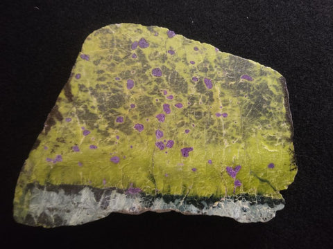 Polished Stichtite in Serpentine (Atlantisite) STI127