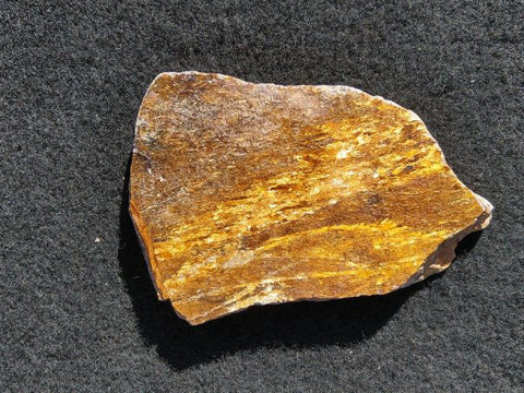 Polished Golden Amphibolite GA119