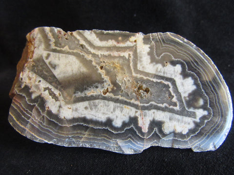 Polished Wyloo Agate WA126