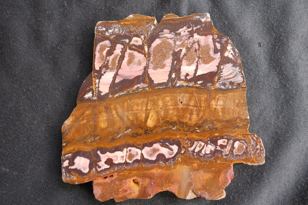 Polished Outback Jasper slab OJ118