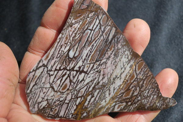 Polished Outback Jasper slab.                                OJ123