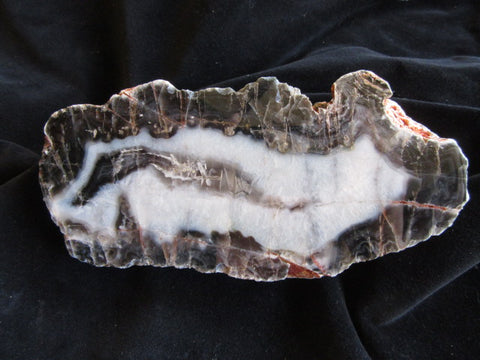 Polished Pilbara Agate PA234
