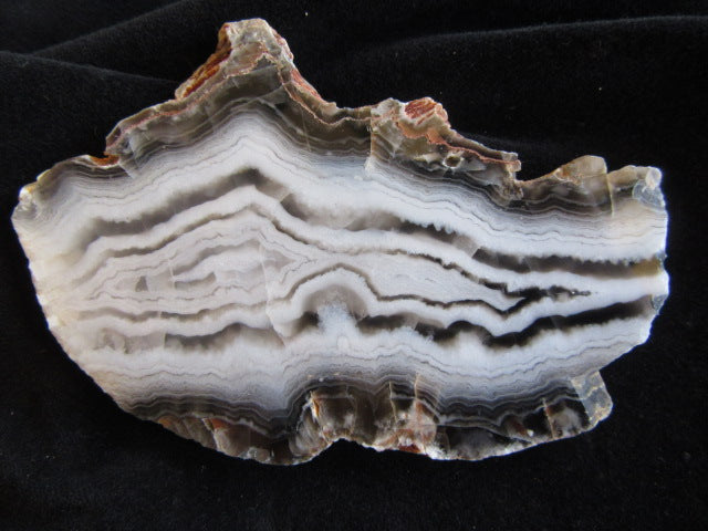 Polished Pilbara Agate PA235
