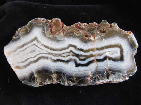 Polished Pilbara Agate PA237