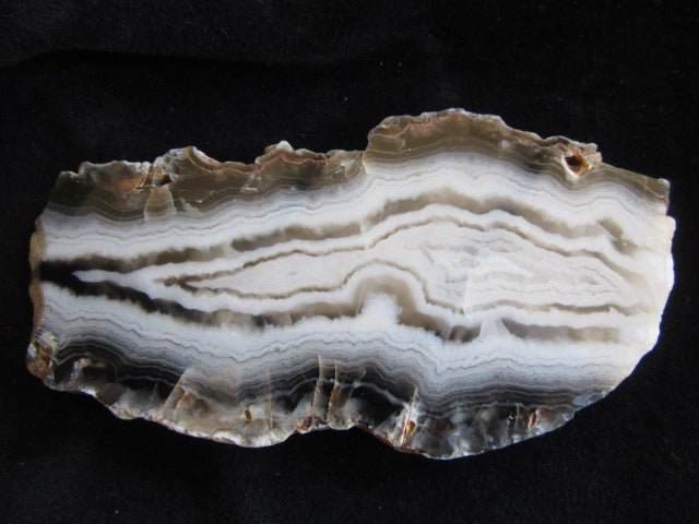 Polished Pilbara Agate PA236