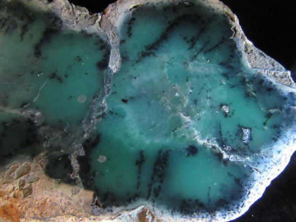 Polished Chrysoprase CH344