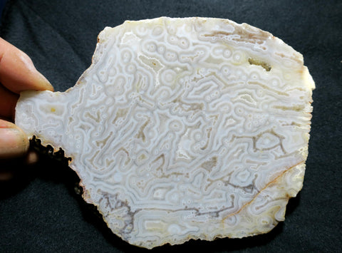 Kumarina Agate Polished Slab.  KA 101