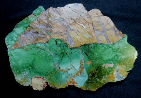 Variscite Polished Slab.  VP 212