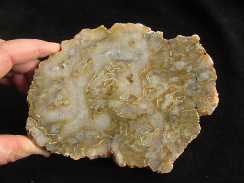 Polished Kumarina Agate KA110