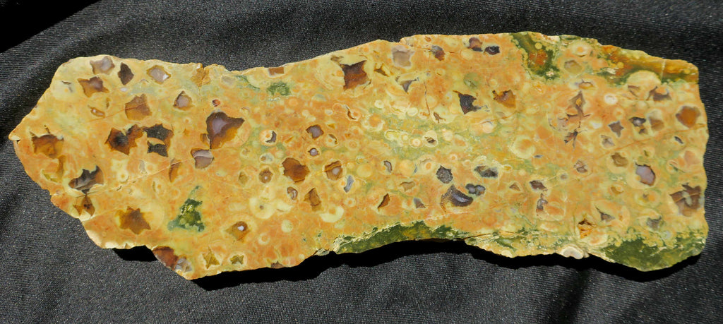 Polished Rainforest Jasper RFJ102