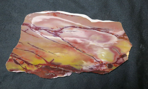 Polished Mookaite slab.    MK264