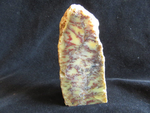Dendritic Opal Rock Block RB239