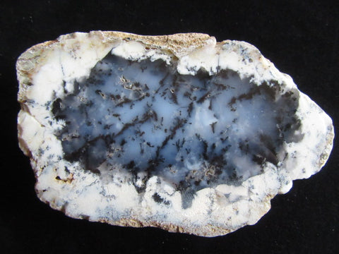 Polished Dendritic Opal DO152