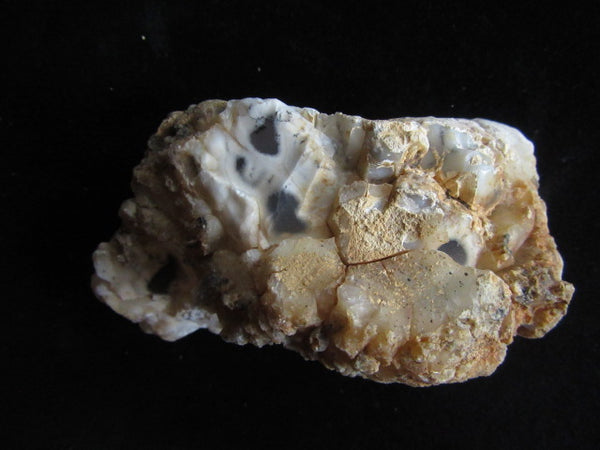 Polished Dendritic Opal DO145