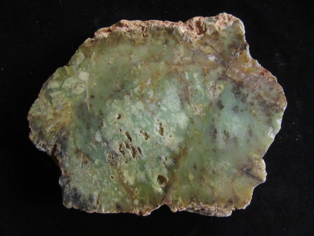 Polished Dendritic Opal DO150