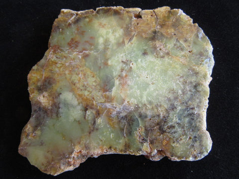 Polished Dendritic Opal DO151