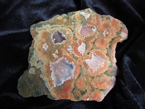 Polished Rainforest Jasper RFJ110