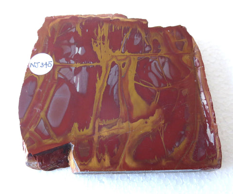 Polished Noreena Jasper slab. NJ345