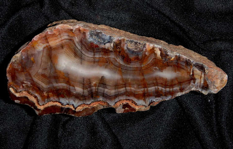 Polished  Pilbara Agate.  PA212