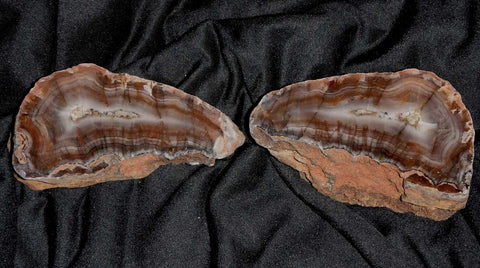 Polished  Pilbara Agate.  PA214