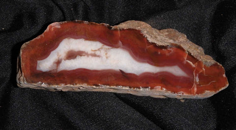 Polished  Pilbara Agate.  PA217