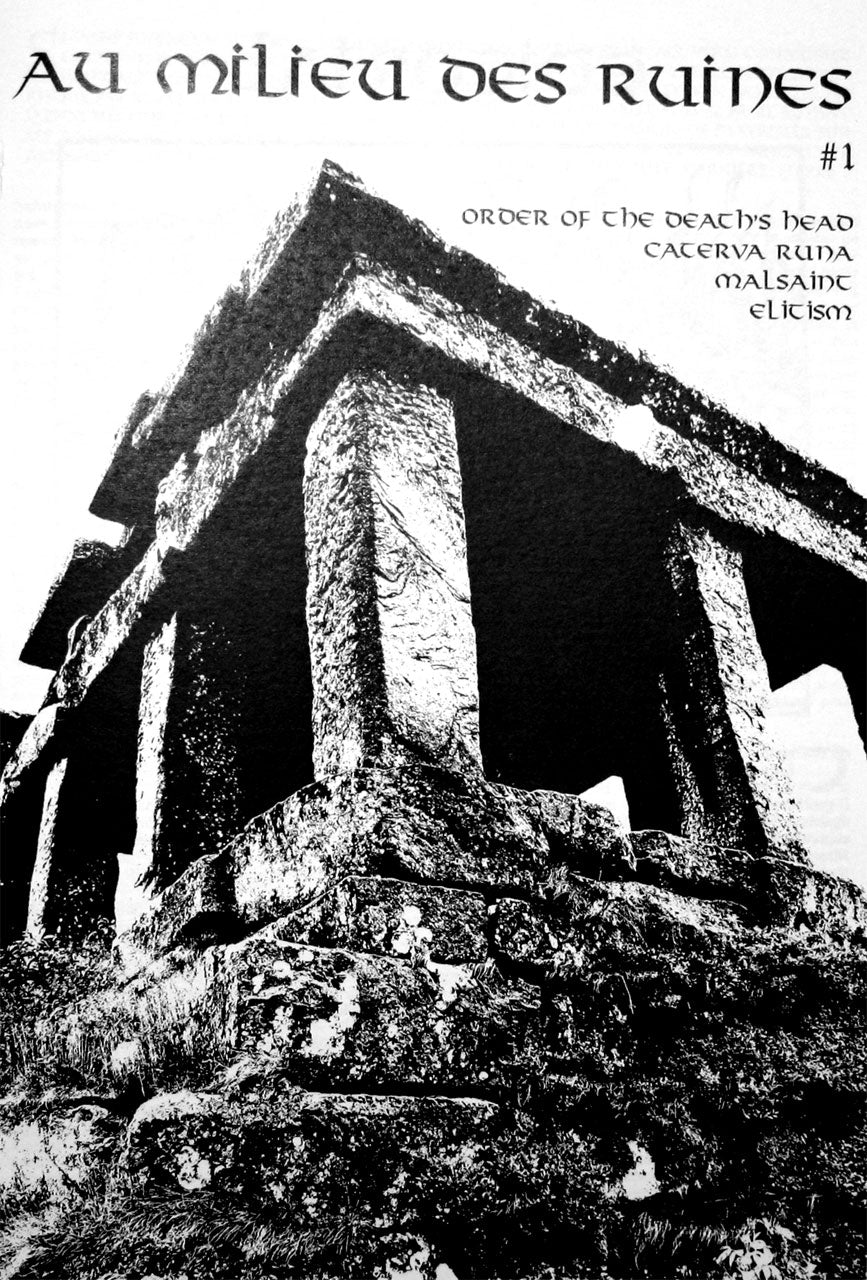 Au milieu des ruines - Issue 1 (English Edition) (Zine)