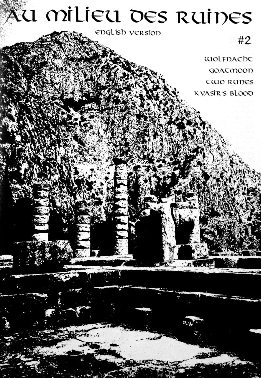 Au milieu des ruines - Issue 2 (English Edition) (Zine)